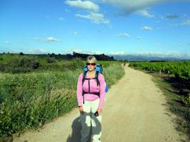 Vineyards near Villafranca del Bierzo