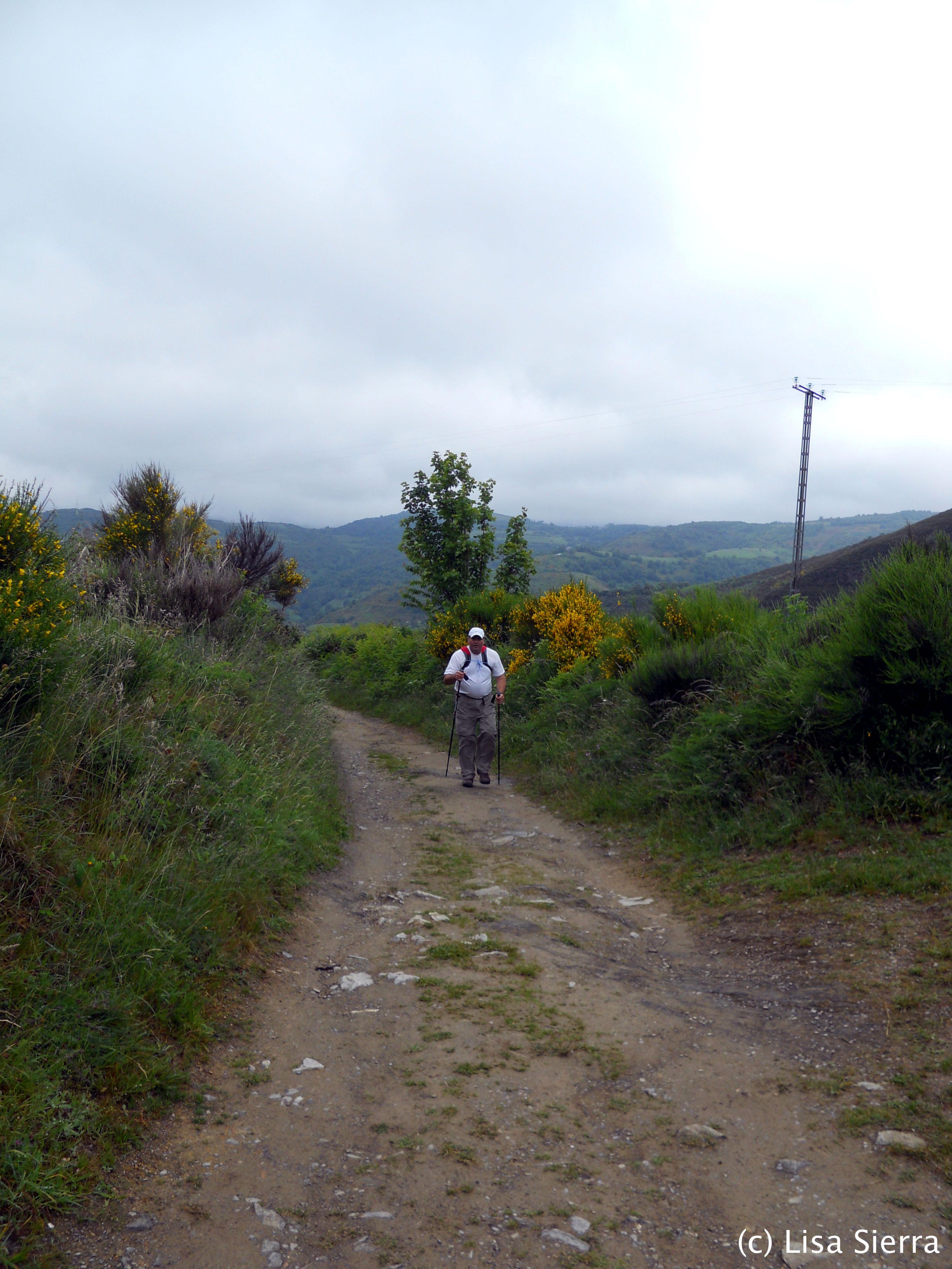 (c) El Camino de Santiago